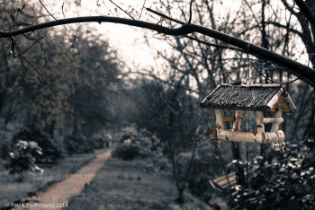 Botanicka_zahrada_NIK2241