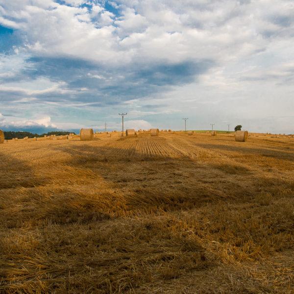 Letní slámové pole