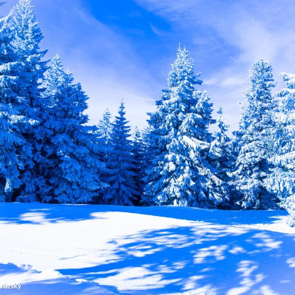 Zima jako z katalogu