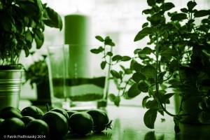 Botanicka_zahrada_NIK2296-2