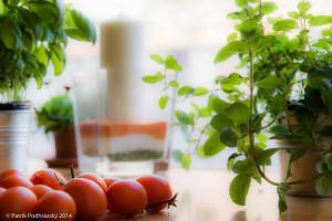 Botanicka_zahrada_NIK2296