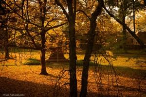 Podzim_NIK6138